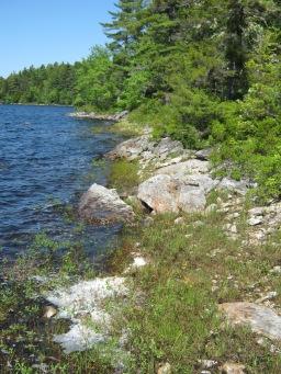 ACPF lake edge