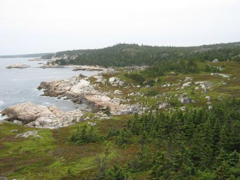 Coastal edges